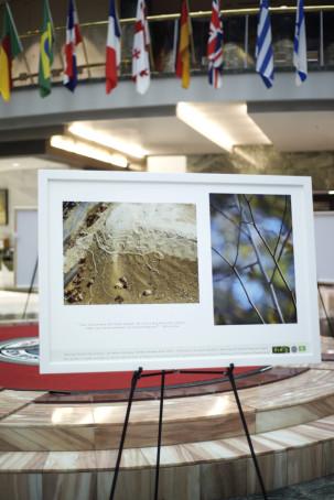 ecoA photos show 5_DSC9857