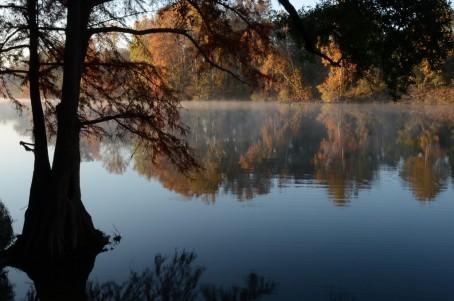 Lower Flint River 3